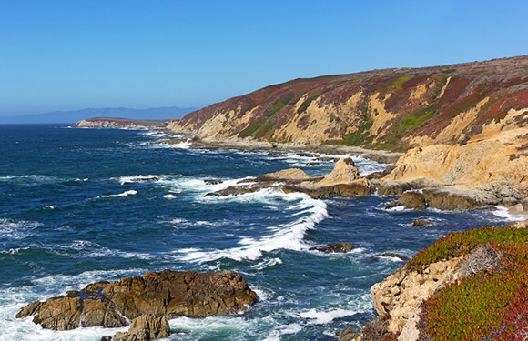 8 best places to fish in california active for Bodega bay fishing charters