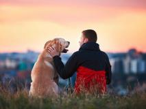 Are Dog Owners Healthier People?