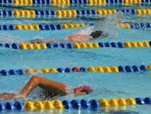 Busy Pool? Lap Swim Etiquette for Sharing Lanes
