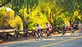 Festive Fall Metric Century Rides