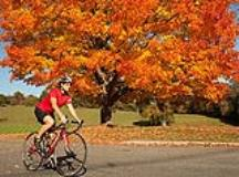 How to Dress for Fall Cycling