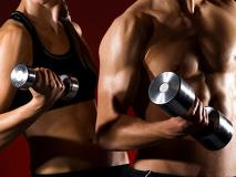 How to Gain Muscle for Beginners