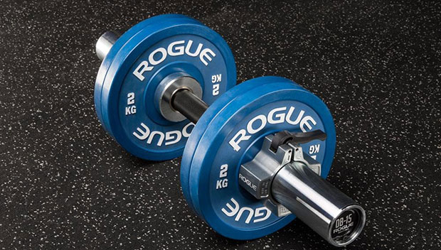5-Rogue-Loadable-Dumbbell