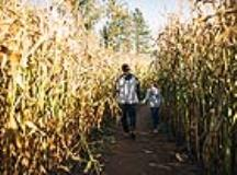 8 Great Outdoor Activities to Make the Most of Fall