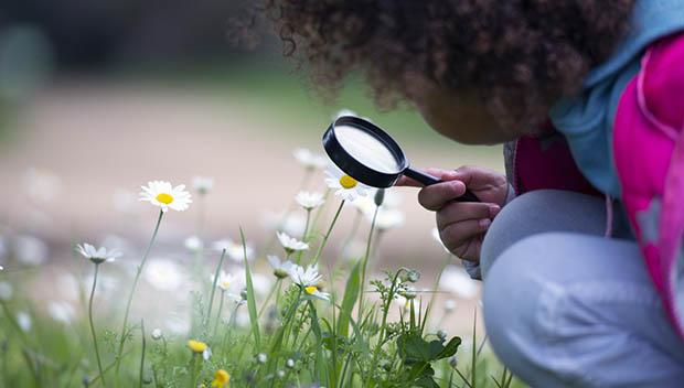 kid looking at flower