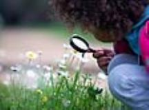 Kids Guide to Early Spring Flower Identification