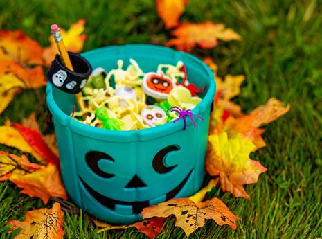 Teal+pumpkin front