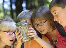 Summer Camps for Kids: 10 FAQs to Know Before Registering