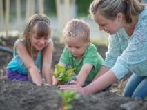 Trick Your Kids Into Yard Work by Starting a Garden