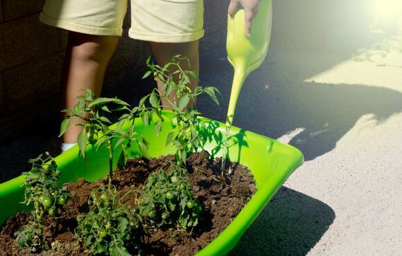 Trick Your Kids Into Yard Work By Starting A Garden Activekids