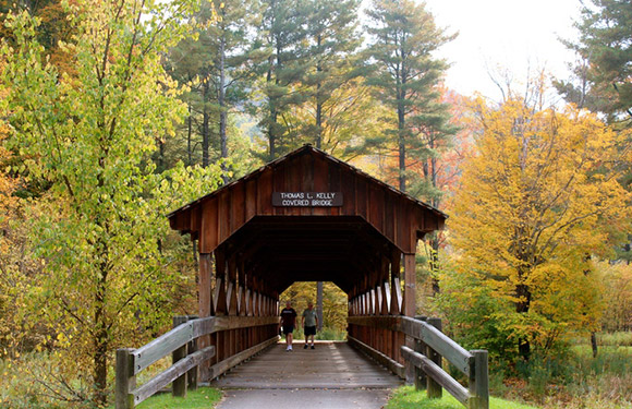 best new york campgrounds for fall color active