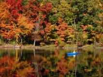 Best New York Campgrounds for Fall Color