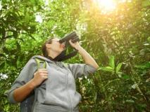 How to Get Started in Birding