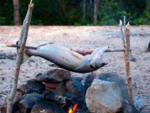 How to Clean a Fish at the Campsite (And Then Cook It)