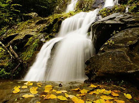 5 Breathtaking Waterfall Hikes in Shenandoah National Park