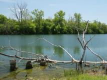 Gone Fishing: 8 Campgrounds For Anglers