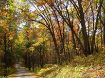 The Best Ohio Campgrounds for Fall Color