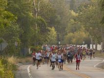 The Best Half Marathons to Get a PR