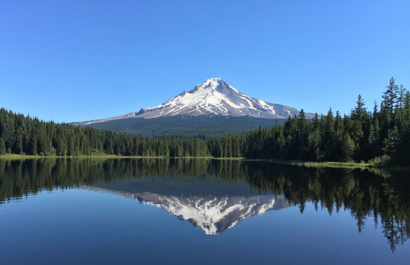 Kylie Brooks/U.S. Forest Service/Mt. Hood National Forest
