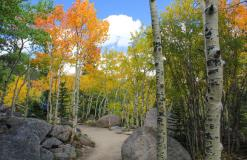 5 Best Places to Run to Experience Fall Foliage