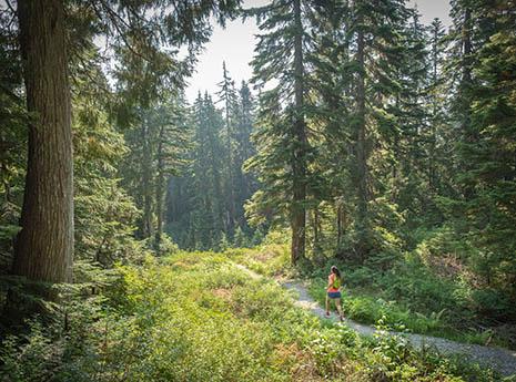 Trail+runner front