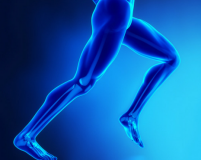 How to Treat and Prevent Running Injuries: Iliotibial Band Syndrome
