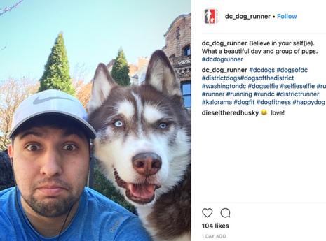D.c.+dog+runner-front